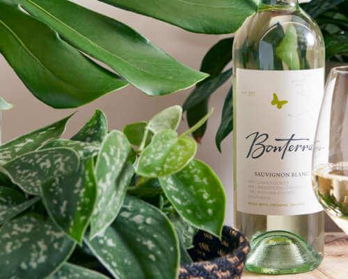 Bonterra Sauvignon Blanc wine