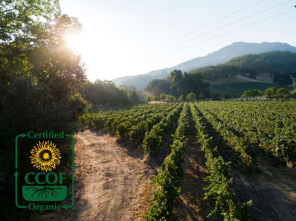 CCOF - Certified Organic Bonterra Organic Vineyards